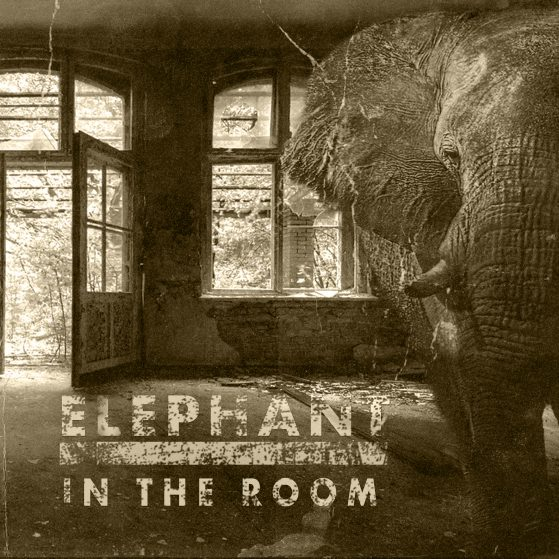 Elephant in the room cover